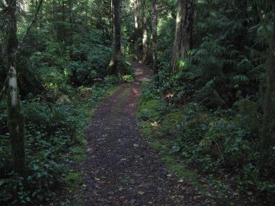 Trail 2 002